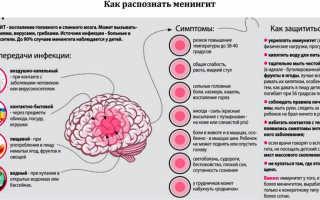 Менингококковая инфекция и ее профилактика