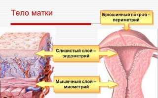 Причины неоднородной структуры миометрия: диагностика и лечение