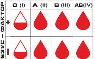 Способы как узнать группу крови и резус-фактор самостоятельно