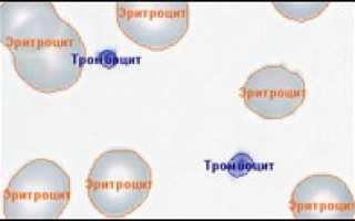 ПО для анализа крови, лейкоцитарная формула, эритроцитометрия, подсчет тромбоцитов, Аргус-Blood, АргусСофт