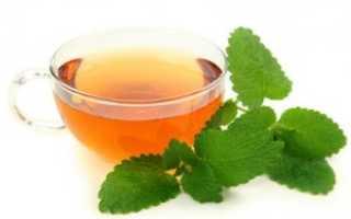 Чай с мелиссой польза и вред, рецепт, можно ли беременным и при грудном вскармливании