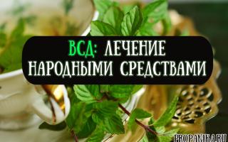 Лечение вегетососудистой дистонию народными средствами